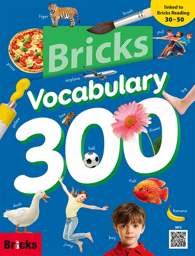 Bricks Vocabulary 300