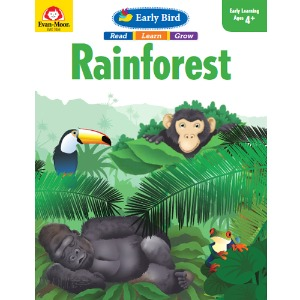 Early Bird : Rainforest